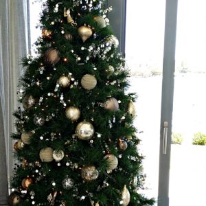 Christmas-tree-hire-perth